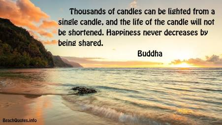 happiness-quote-thousands-of-candles-can-be-lit-from-a-single-candle-20