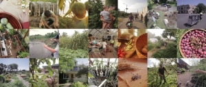 inhabit-permaculture-film.JPG.662x0_q100_crop-scale