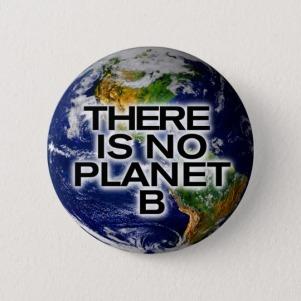there_is_no_planet_b_environment_awareness_button-r413237824e164b6cbf54693cdee8835c_k94rf_540.jpg